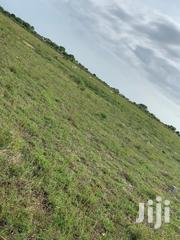 Affordable Prampram (Tsopoli) New Airport City Lands For Sale | Land & Plots For Sale for sale in Greater Accra, Ashaiman Municipal